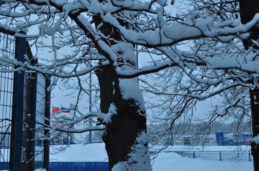 Снежный стадион 13.02.19 - 9.jpg